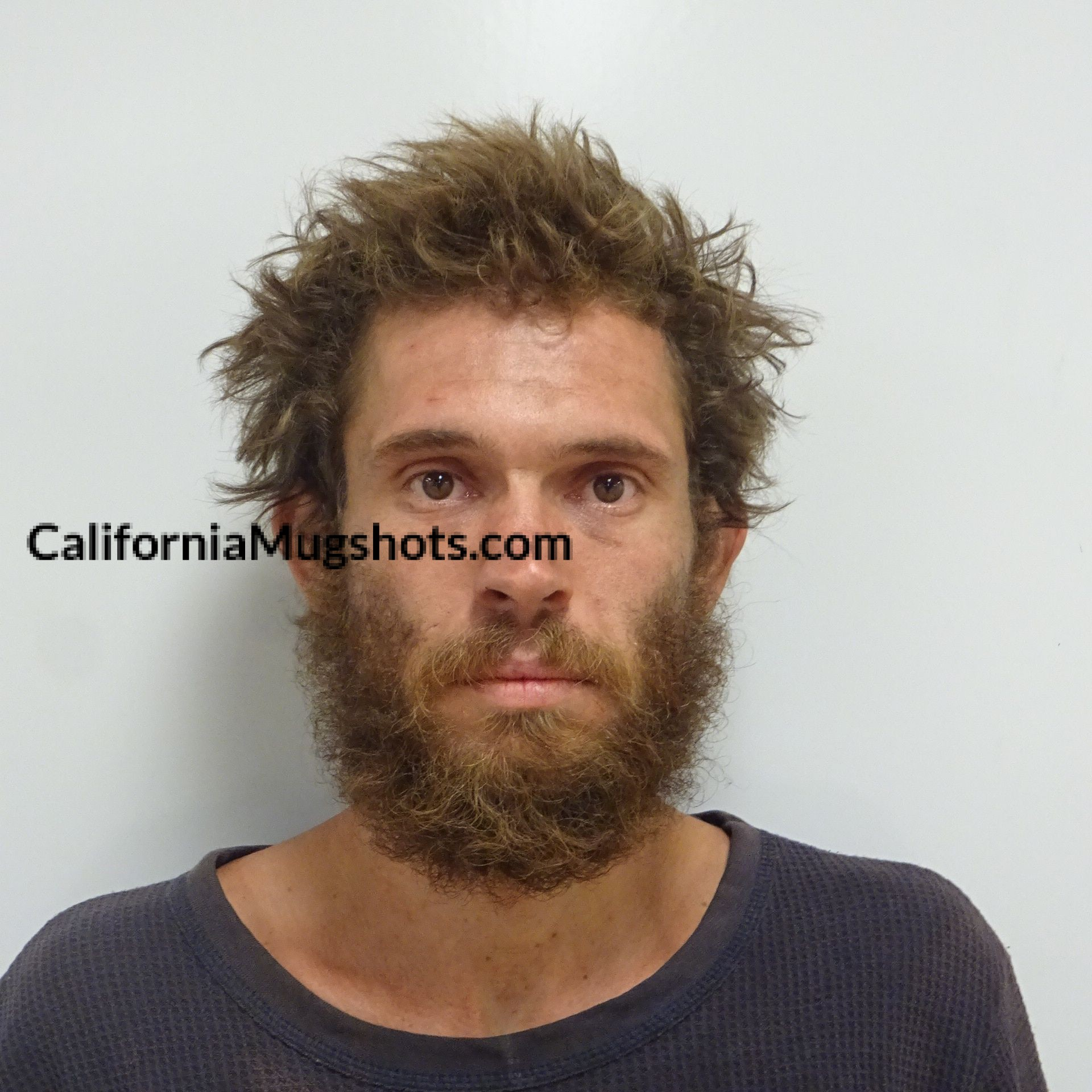 Shane Michael Smith arrested in Lake County,CA