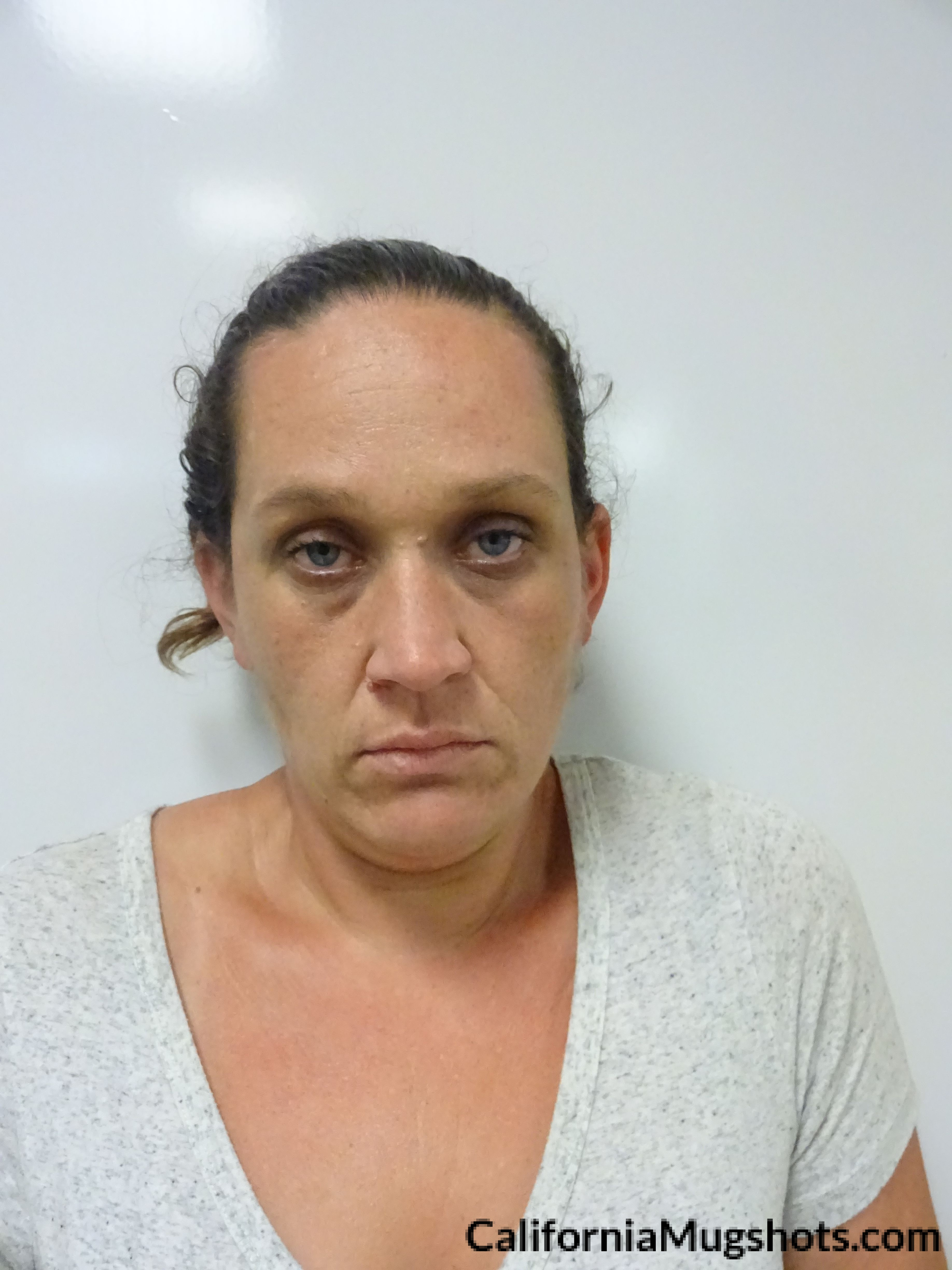 Tuesday Ann Pennel arrested in Lake County,CA