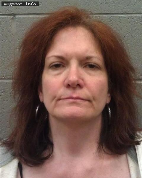 Susan Lynn Mcdaniel arrested in Rocklin,CA